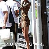 Kendall Jenner's Cheetah-Print Minidress