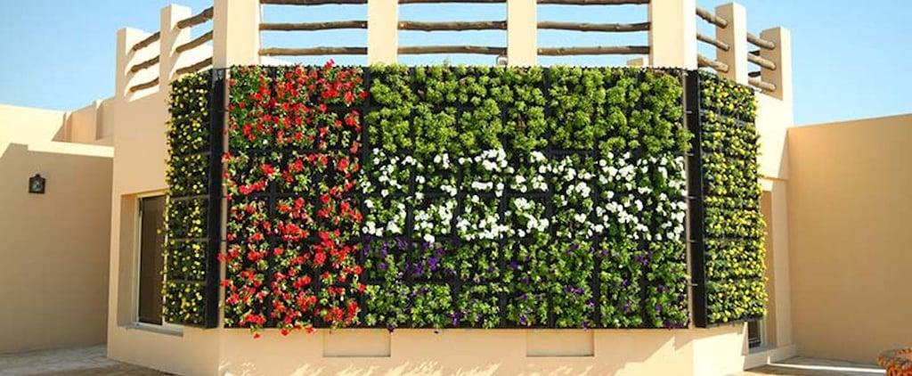 Dubai Quranic Park