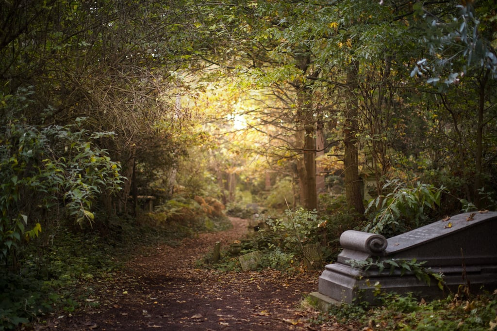 Abney Park Cemetery (Stoke Newington)