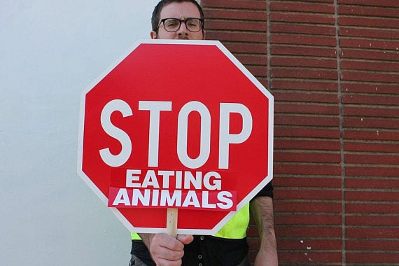 Stop Eating Animals Bumper Sticker 10-Pack