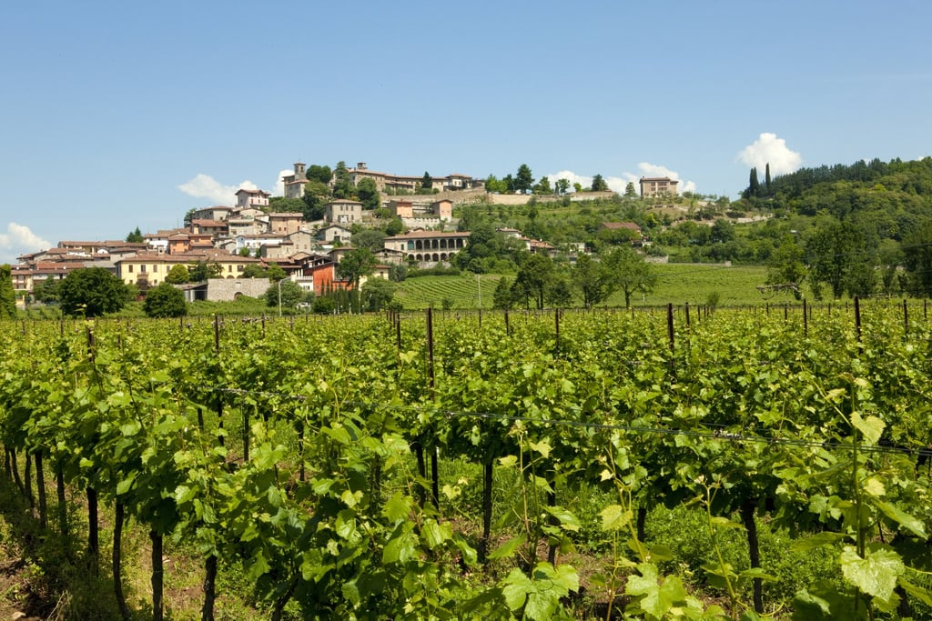 12 of the Best Wine Destinations in the World