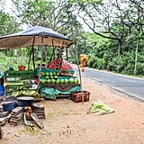Roadside Fruit Stands