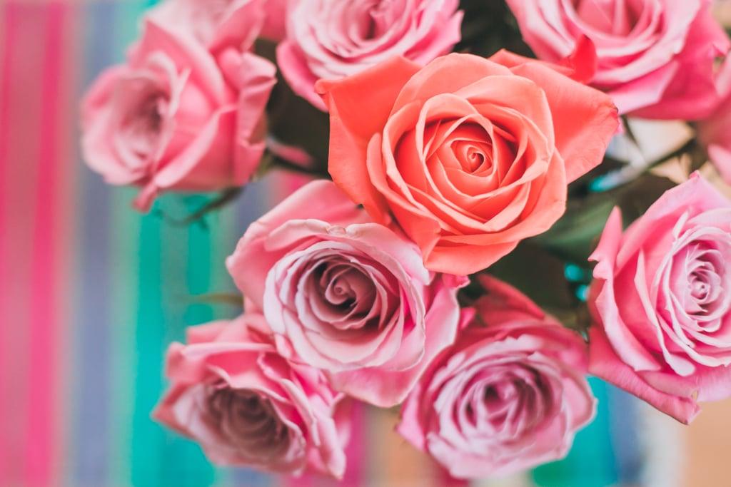 الزهور، ثم الزهور، ثم الزهور
