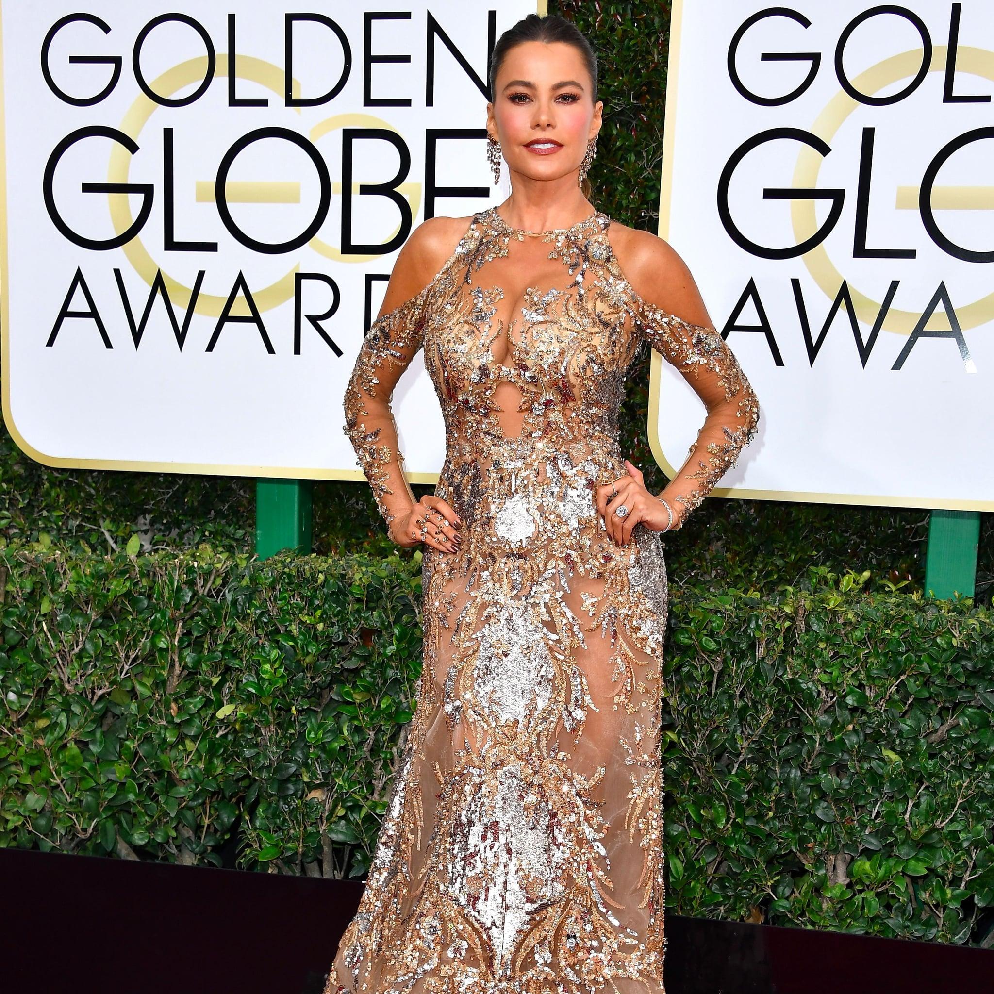 Sofia Vergara\'s Zuhair Murad Dress at the 2017 Golden Globes ...