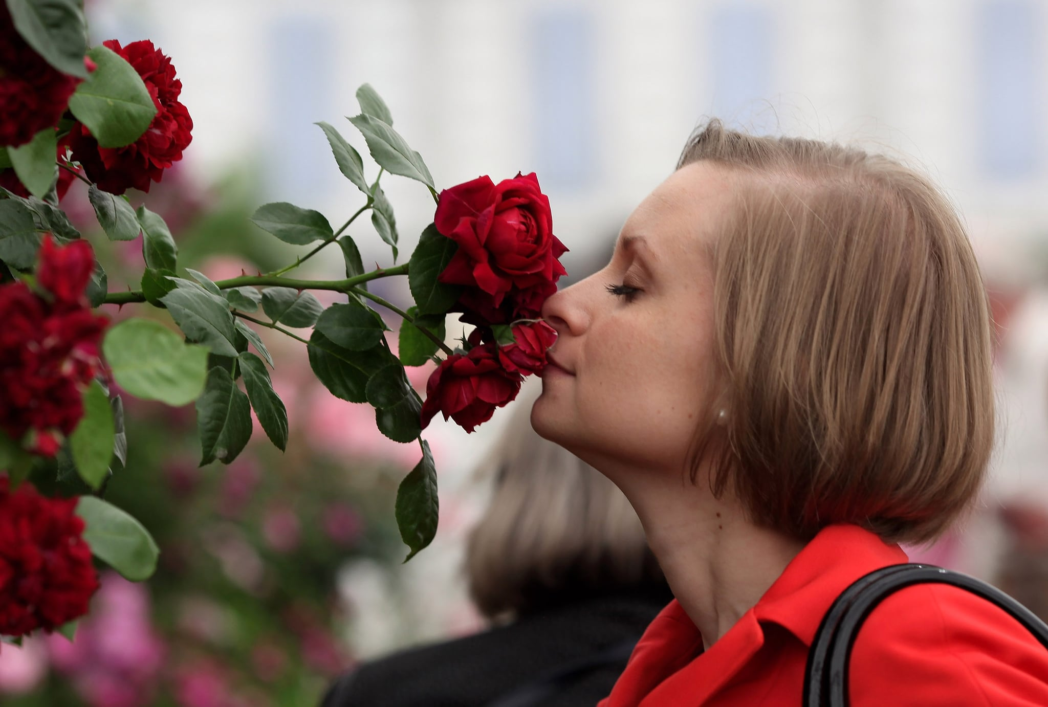 Smell The Roses The Week In Pictures Popsugar Love Sex Photo 8
