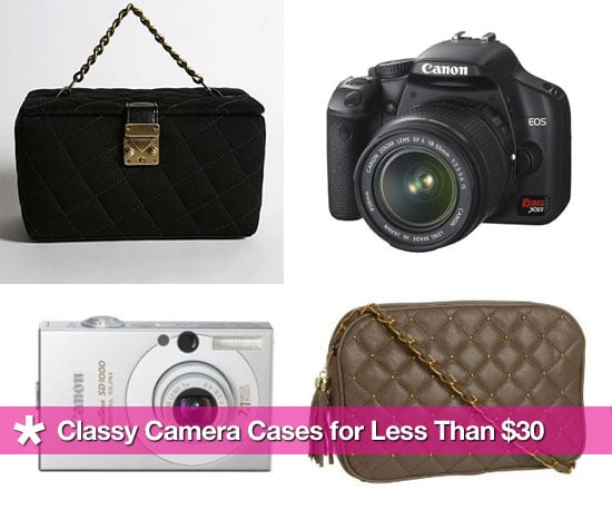 Classy Camera Cases For Less Than $30