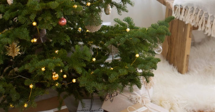 What To Put In Christmas Tree Water