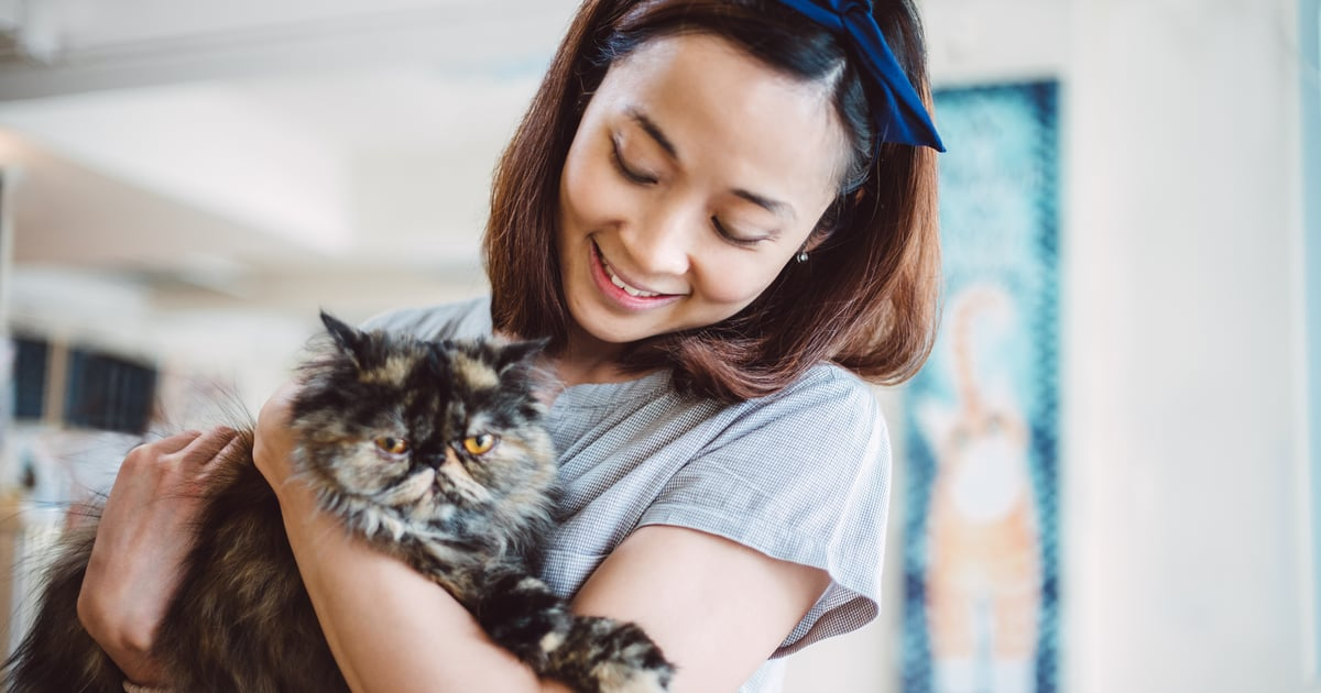 From Siamese to Bengals, This Is Your Cat Breed According to Your Zodiac Sign