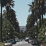 Los Angeles, CA — La La Land