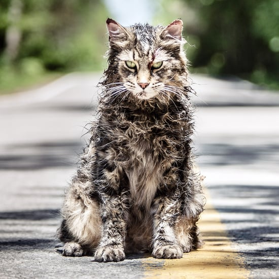 Stephen King's Pet Sematary Book Ending and Spoilers