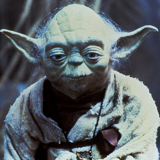 What Species Is Yoda From Star Wars?
