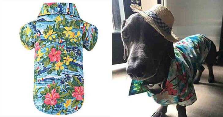 Hawaiian Shirt For Dogs on Amazon | POPSUGAR Family