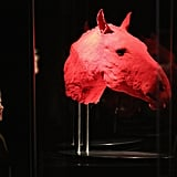 Another otherworldly display shows the circulatory network in a horse's head.