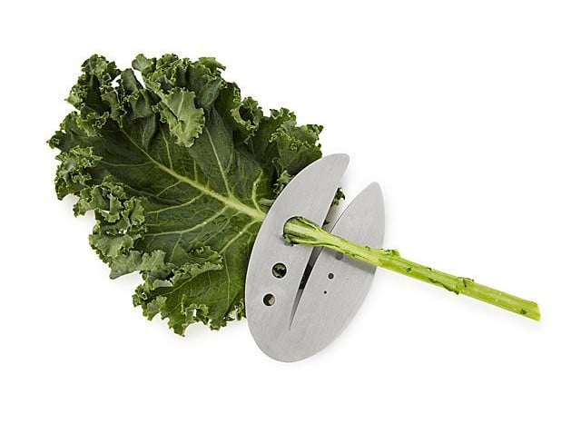 Easy Way to Remove Kale Stems