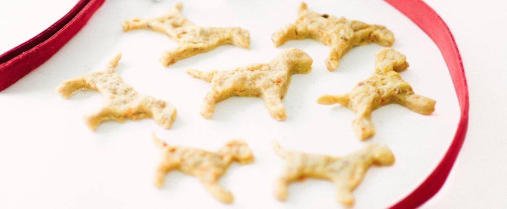 Carrot and Apple Tasty Dog Biscuit Recipe