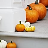 America produces about 15 billion pounds of pumpkins every year.