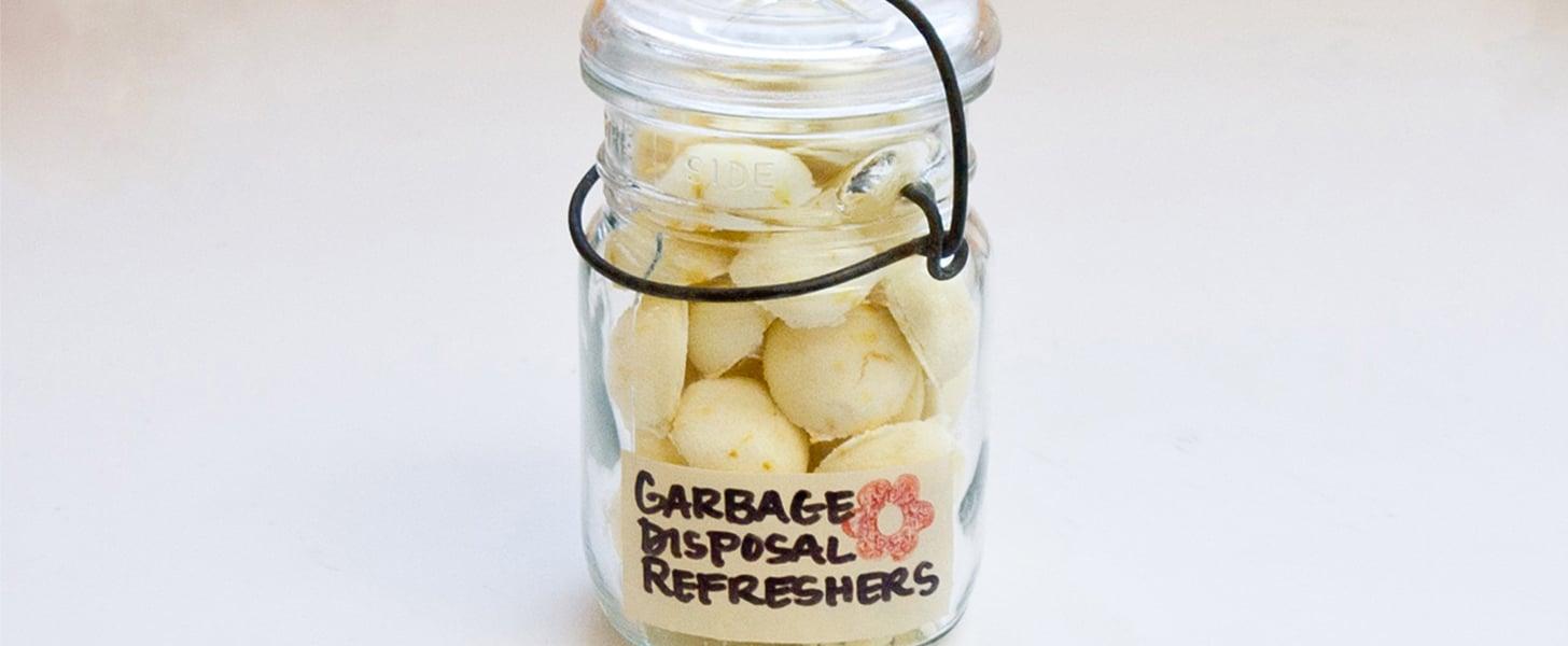 Homemade Garbage Disposal Refreshers