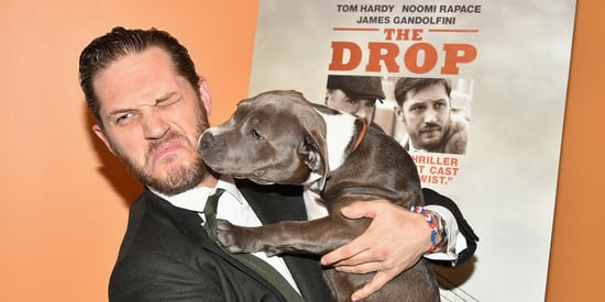 10 Pictures Of Tom Hardy Playing With A Dog
