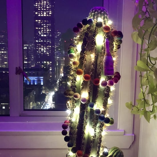 How to Decorate a Cactus For Christmas