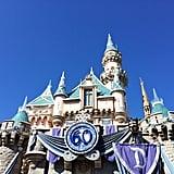 Visit a Disney Park