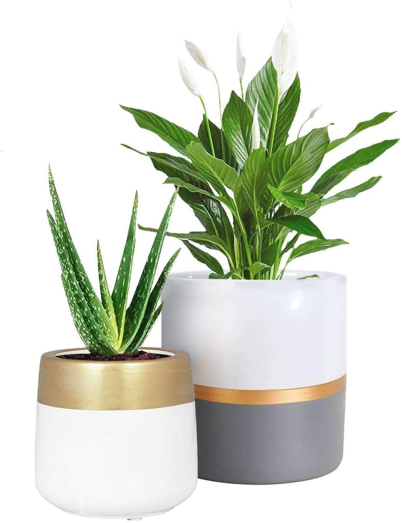 Ceramic Planter Pots Indoor