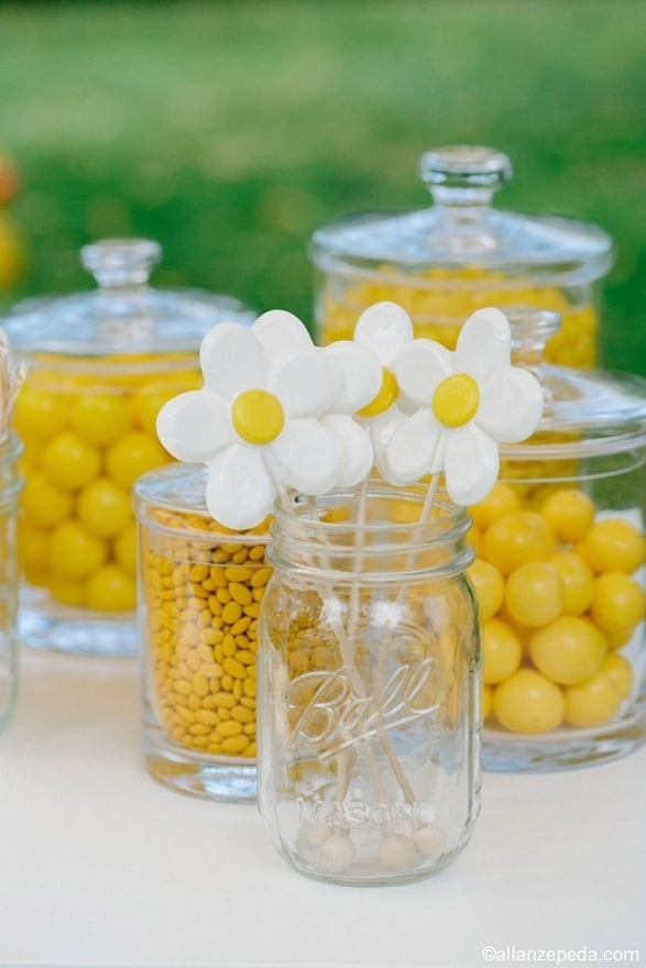One of the best parts of a daisy party is that it is so easy to match things to it. Yellow gumballs, M&M's, jelly beans, Lemonheads, and more are readily available. Gather them in some glass jars, and your decor is halfway done!