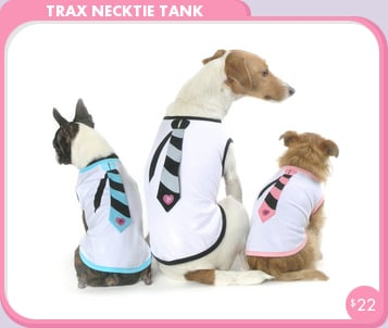 Come PetMarking With Me: Doggies Back-to-School Duds