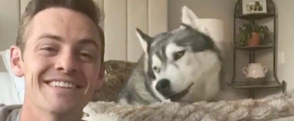 "Hospital Worker Harmonizes With Husky For ""Lean on Me"" Cover"