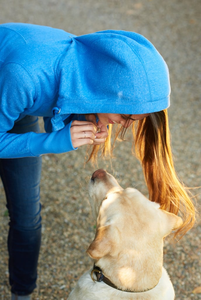 What Is A Good Rate To Charge For Dog Walking