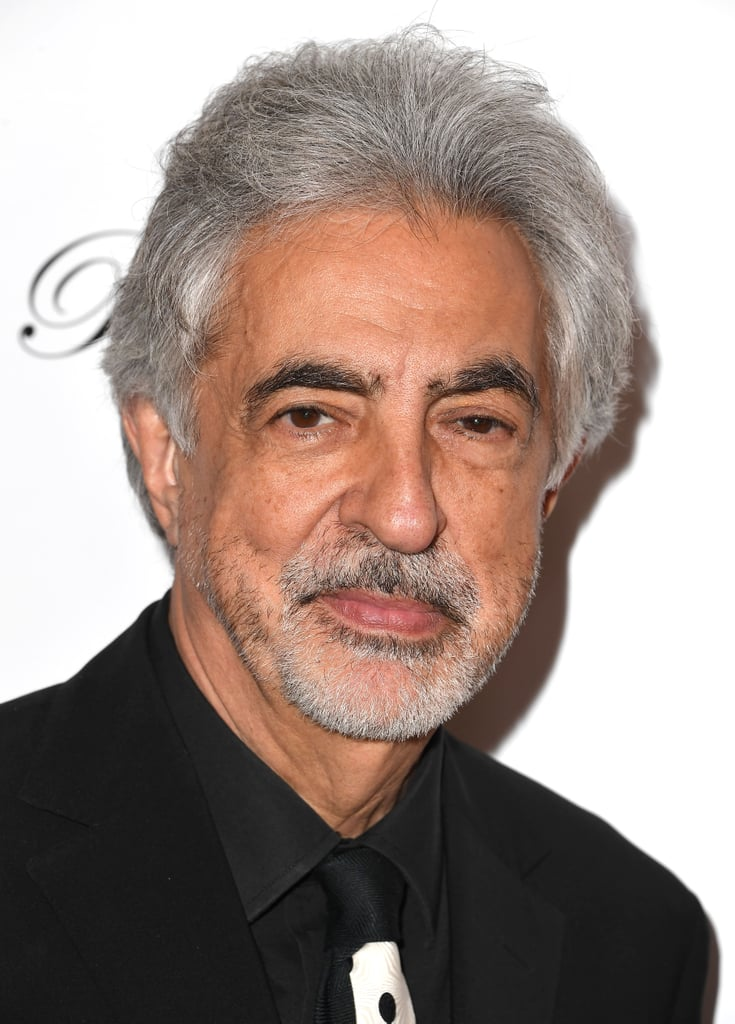 Joe Mantegna as David Rossi