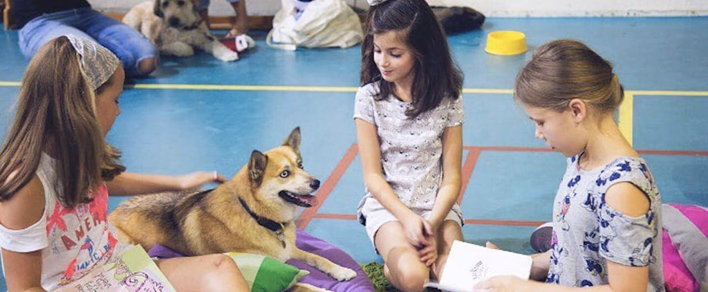 Dogs in Dubai Are Helping Kids Overcome Their Fears of Reading Aloud