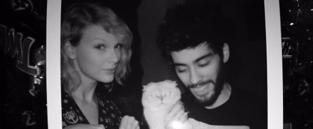 "Taylor Swift and Zayn's ""I Don't Wanna Live Forever"" Song"