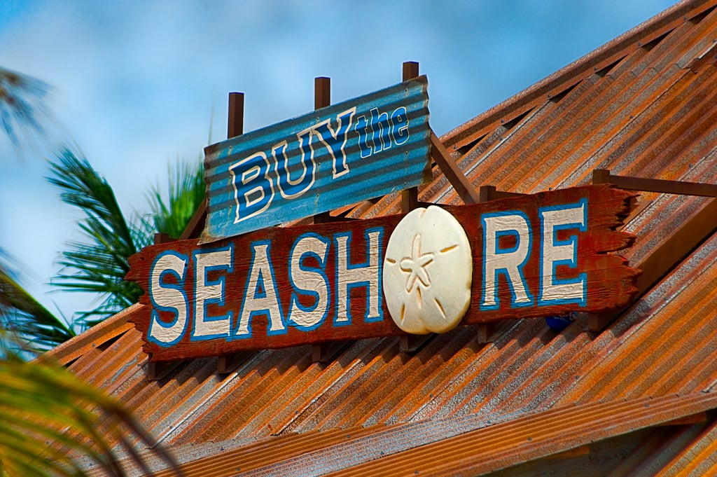 You can only get Castaway Cay souvenirs on the island.
