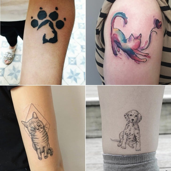 Cutest Animal Tattoos