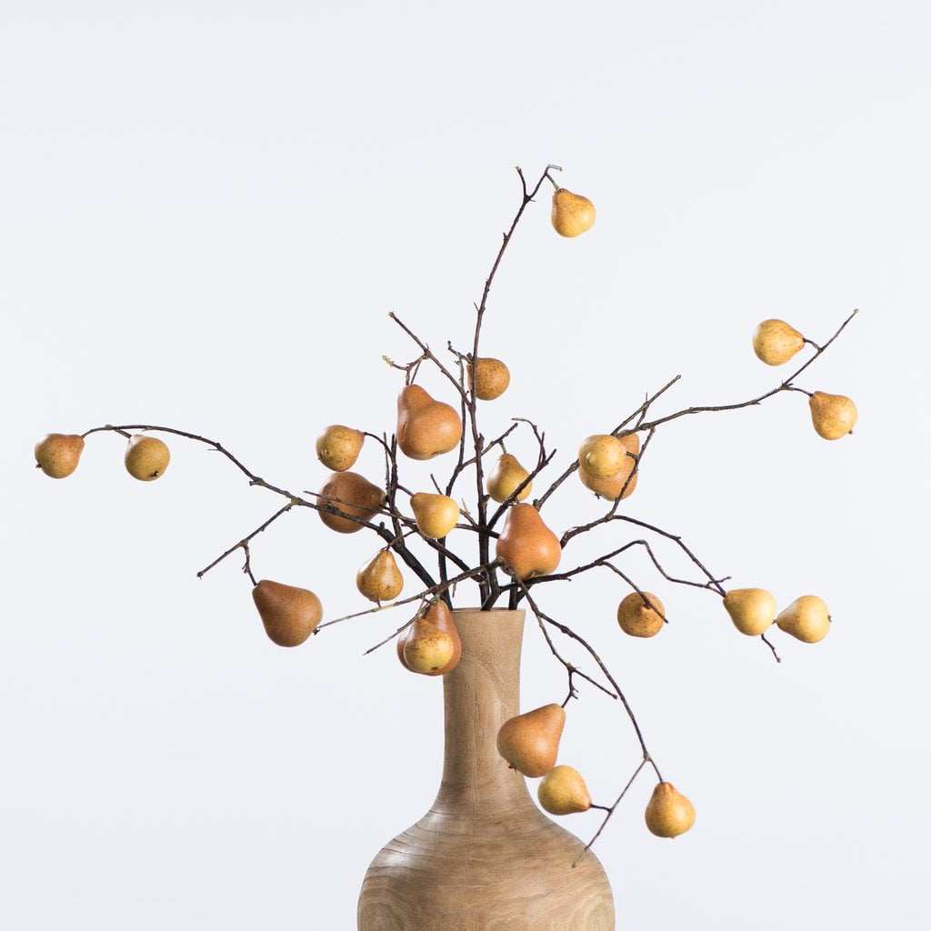 Autumn Pear Stem