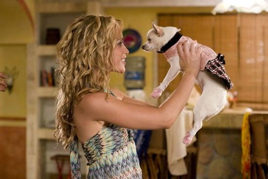Behind-the-Scenes: Chloe's Beverly Hills Chihuahua Wardrobe