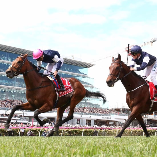 Rekindling Wins the Melbourne Cup 2017