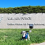 Then it was off to the US Air Force and Air Force Academy on Memorial Day!