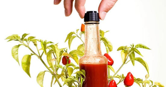 These Healthy Hot Sauce Recipes Are Next-Level Brilliant