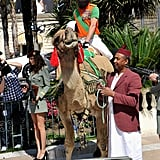 Sacha Baron Cohen made a grand entrance on a camel at the Cannes Film Festival.