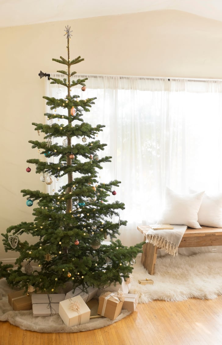 best christmas tree the best tree for the environment popsugar home 10287