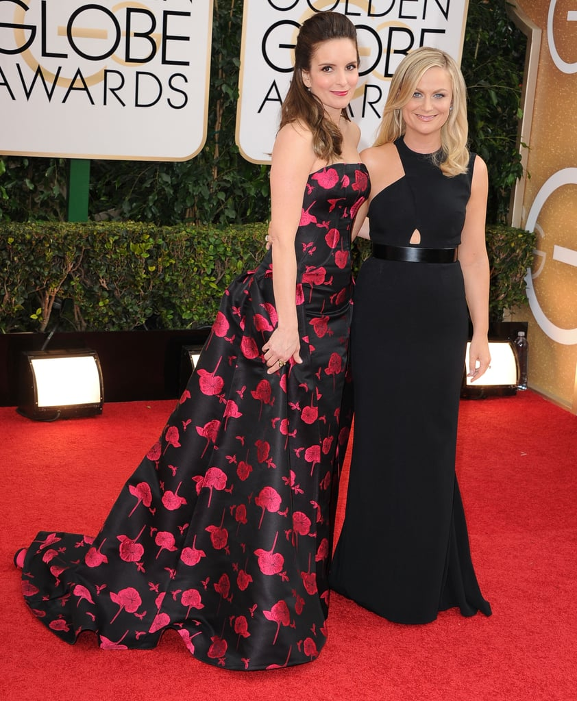 The hilarious pair hit the red carpet together before hosting the 2014 Golden Globes.