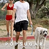 Miley Cyrus Flaunts Her Toned Abs While Hiking With Liam Hemsworth and Their Dogs