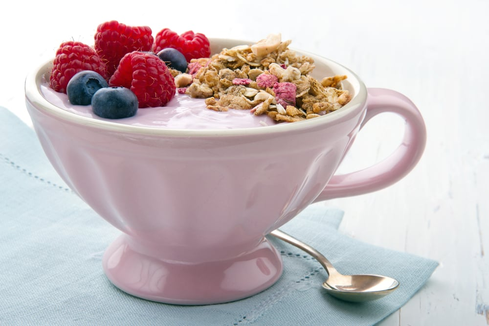 Foods With Probiotics For Digestive Health