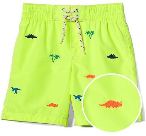 Dinosaur Surf Swim Trunks