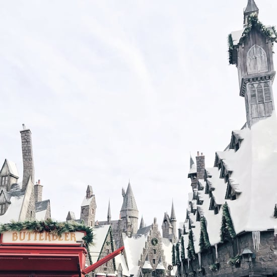 Wizarding World of Harry Potter Christmas Experience