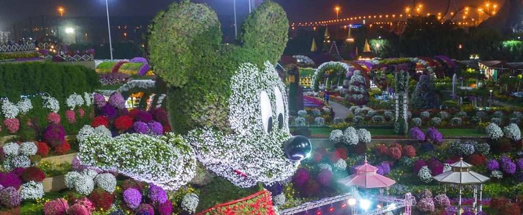 Dubai Miracle Garden Has Smashed Another Record With This Floral Mickey Mouse