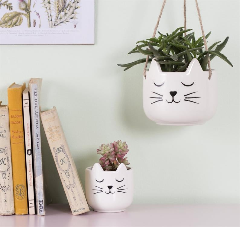 Mini White Cat's Whiskers Indoor Planter Pot