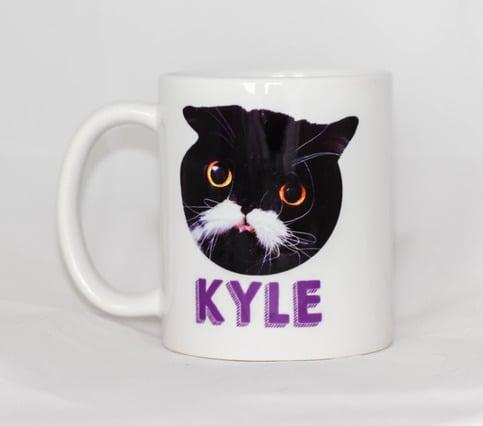 My Cat Kyle Mug