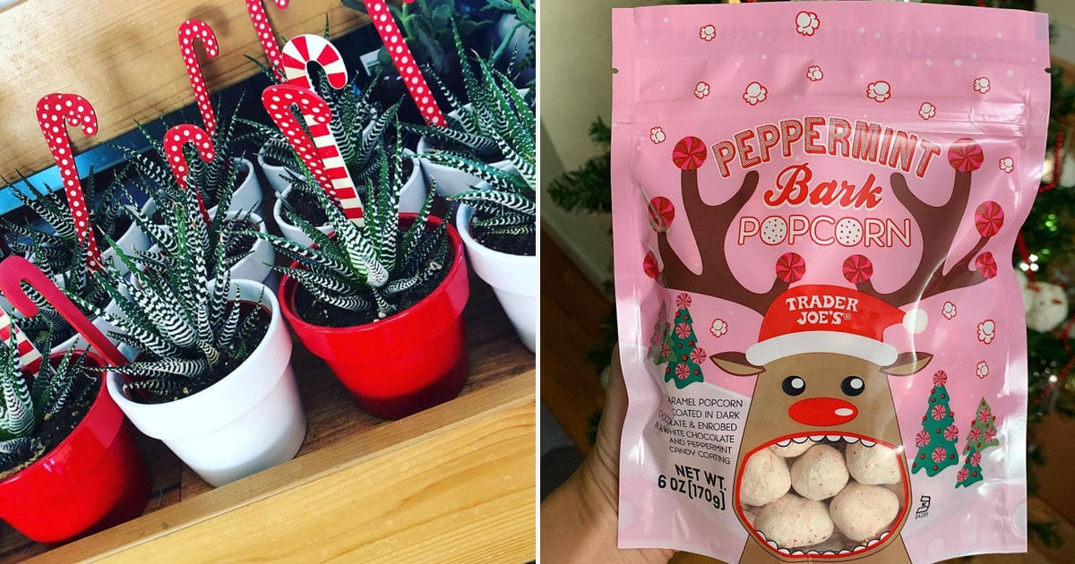 51 Holiday Products From Trader Joe's That Are Perfect For Gift Giving